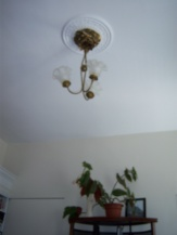Antique light fixture and plaster medallion
